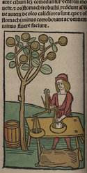 Hand-coloured woodcuts and text from Hortus sanitatis