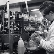 Pharmacology laboratory, 1960s (Ref: C/PH4/20)