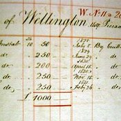 Wellington's contribution