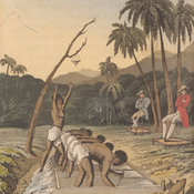 Coloured plate depicting slaves stooping and sifting gravel in the troughs while two overseers look on.