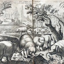 An elephant defending the farmer's harvest, from: Hiob Ludolf. A new history of Ethiopia. London: [printed for Samuel Smith?], [1682?] [FCO Historical Collection FOL. DT376 LUD]
