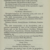 Page 335 (Image 10 of visible set)
