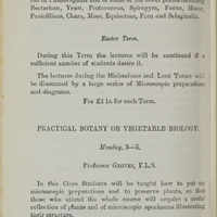 Page 376 (Image 1 of visible set)