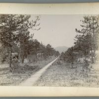 china-photograph-album-00014-60307 (Image 13 of visible set)