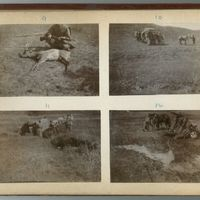 mongolia-photograph-album-1902-00004-60423 (Image 4 of visible set)