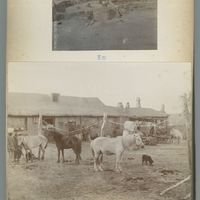 mongolia-photograph-album-1902-00011-60430 (Image 11 of visible set)
