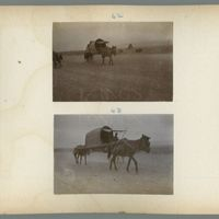mongolia-photograph-album-1902-00018-60437 (Image 18 of visible set)
