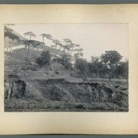 mongolia-photograph-album-1902-00030-60449 (Image 10 of visible set)